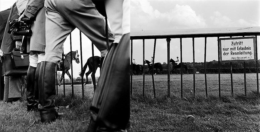 Pferde-Doppel-72-2